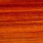 木材学 エレキギター・ベースに使われるちょっとマニアックなボディー材4種
