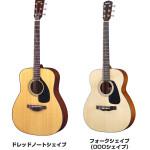 【初心者の一本目】入門用のアコースティックギターの選び方